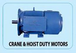 Bharat Electric Motor 05