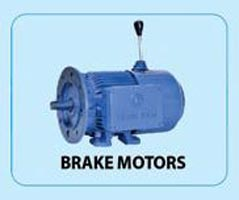 Bharat Electric Motor 09
