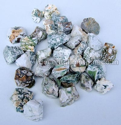 Tree Agate Rough Stones 01