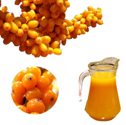 Sea Buckthorn Juice 02