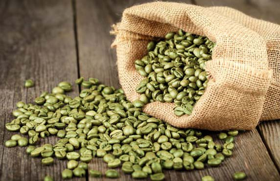 Green Coffee Bean Extract 02