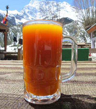 Sea Buckthorn Juice 03