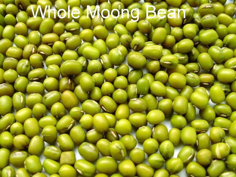 Whole Moong Beans