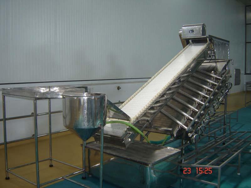 SS PUD Shrimp Washing and Grading  Conveyor