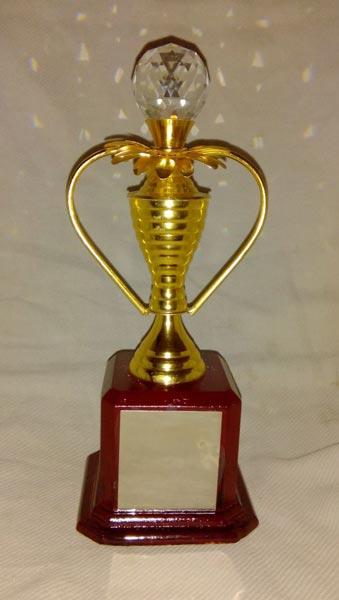 Award Trophy 05