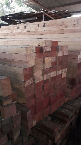 Malaysian Sal Wood 03
