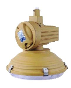 Explosion Proof Induction Light