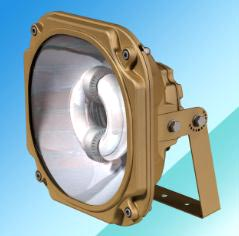 Explosion Proof Induction Light 02