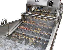 Fruit & Vegetable Washer