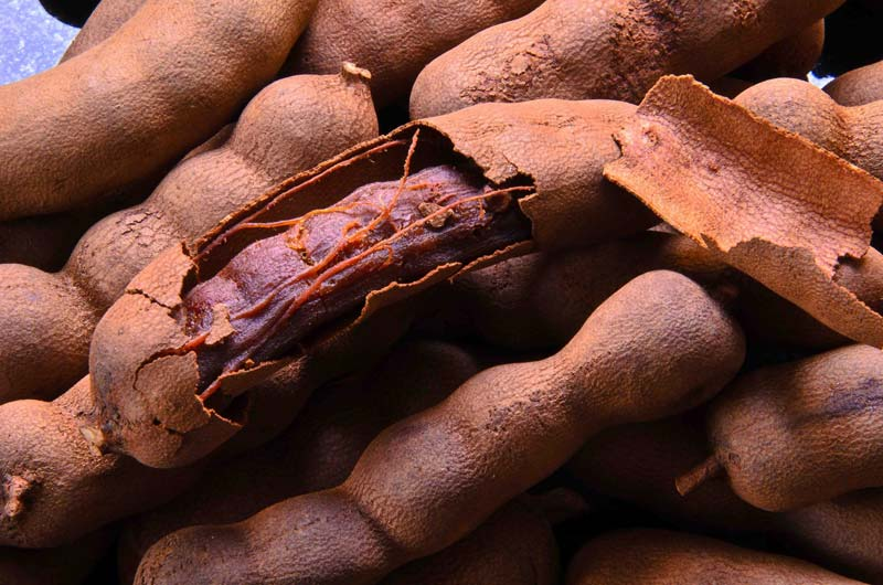 Fresh Raw Tamarind