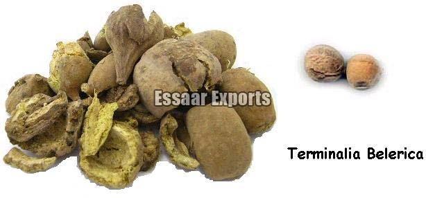Terminalia Belerica