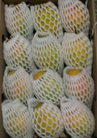 Fresh Mango 04