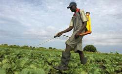 Biochemical Pesticides