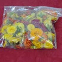 Marigold Flowers 01