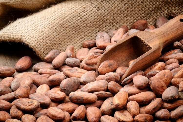 Cocoa Beans 02