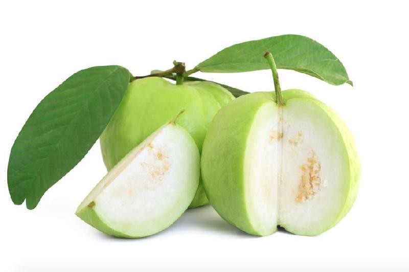 Fresh Flesh Guava