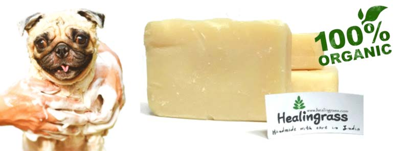 Organic Pet Soap