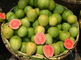 Fresh Guava,Fresh Guava Fruit Suppliers from Andhra Pradesh