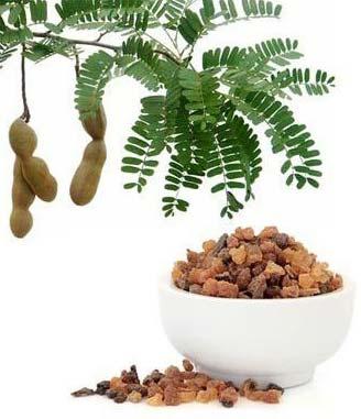 Commiphora Mukul Extract