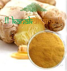 Ginger Extract 02