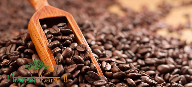 Natural Caffeine Extract 01