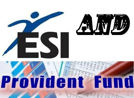 PF and ESI Services