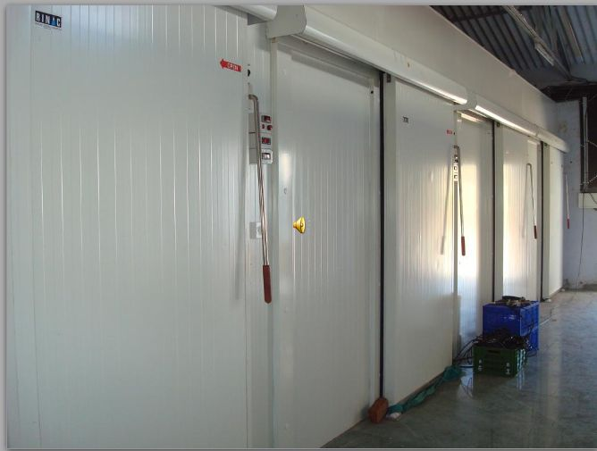 Cold Storage Room Manufacturers In India Designs & Cold Storage Room Manufacturers In India - Storage Designs