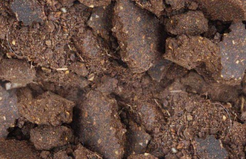 Neem Fertilizer 03