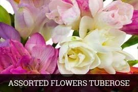 Fresh Ornamental Flowers