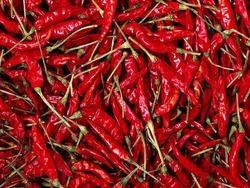 Dried Red Chilli 01