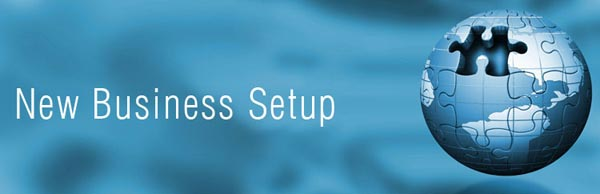 Business Setup Services