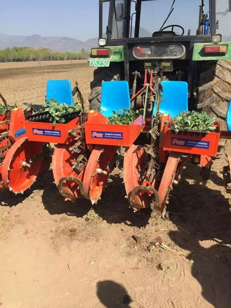 Seedling Planter 03