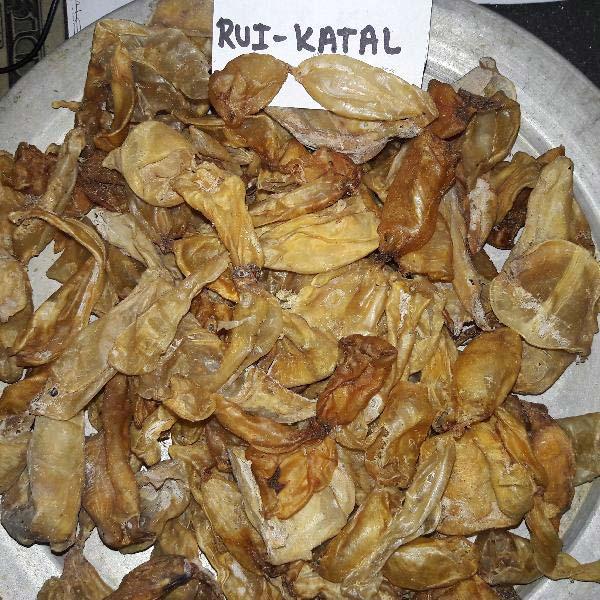 Rui Katal Fish Maw