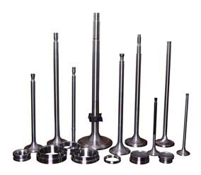 Inlet Exhaust Valves