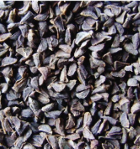 Harmal Seeds Exporter Wholesale Harmal Seeds Supplier In