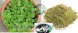 Herbal Brahmi Powder