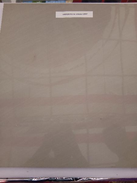 Kandla Grey Sandstone 02