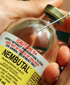 Nembutal Injection