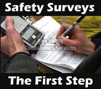 Safety Survey Services