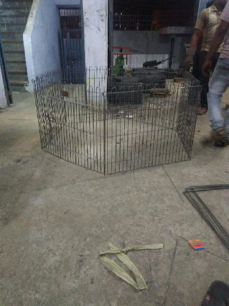 Bird Cage 04