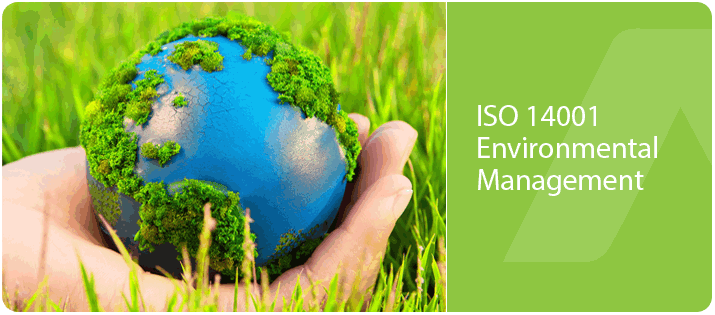 ISO 14001 Certification Service 02