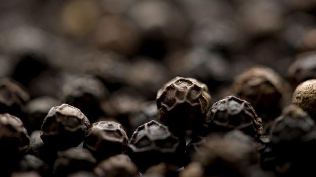 Black Pepper 02
