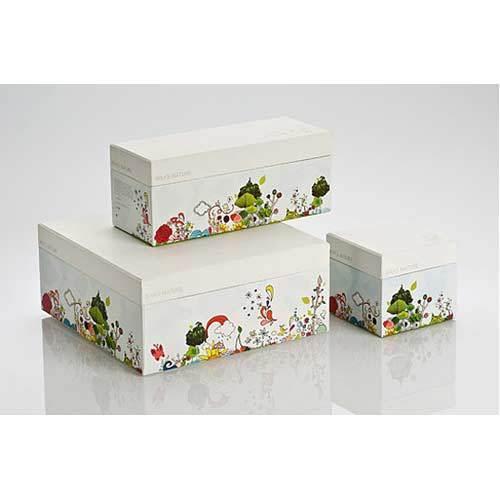 Printed Cardboard Packaging Boxes