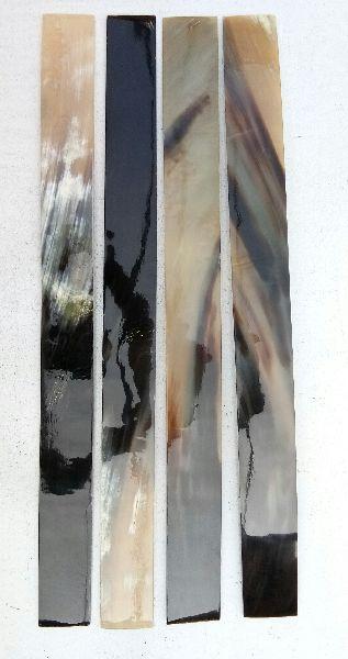 Long Ox Horn Plate 01