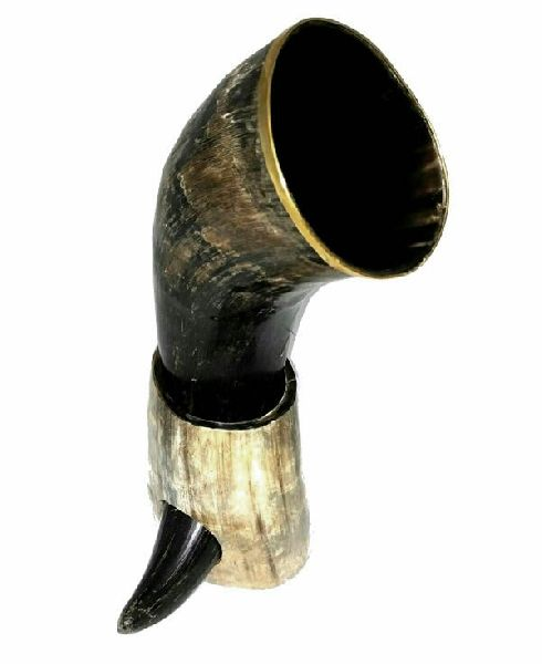 Natural Drinking Horn 02