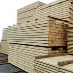 Timber Wood