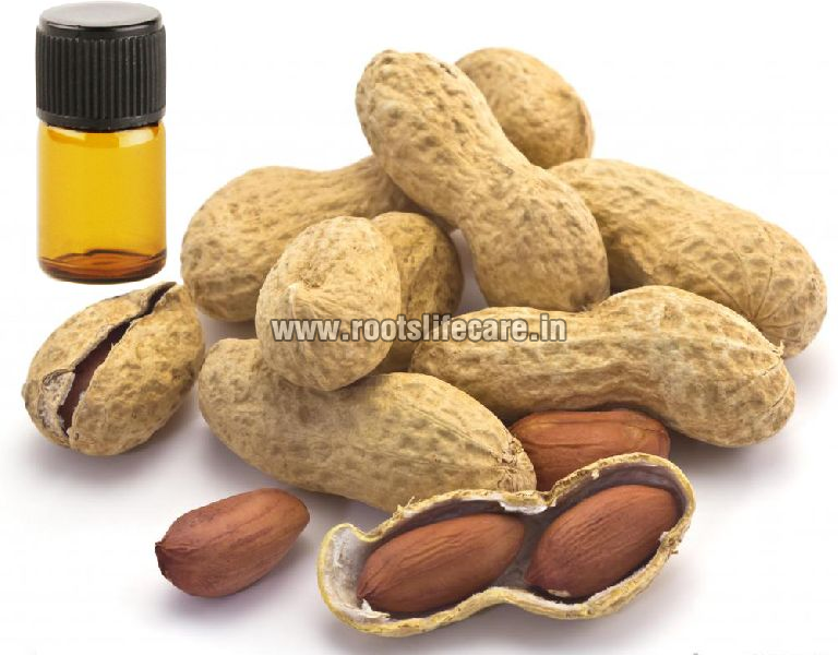 Arachis Essential Oil