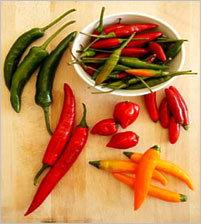 Pepper Chilli