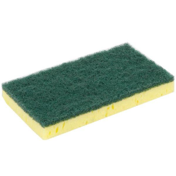 Green Sponge 01