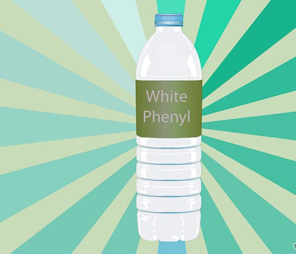 White Phenyl,Liquid White Phenyl,White Phenyl Concentrate Suppliers